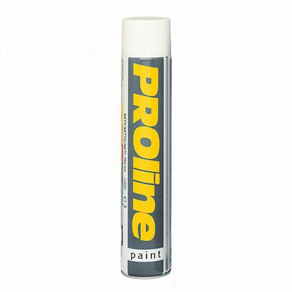 Linienmarkierfarbe Proline Paint